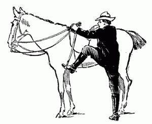 Si le cheval avance, c'est le grand écart assuré !