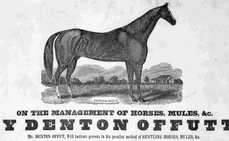 Denton Offutt, the Original Horse-Tamer